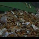 Un exemple de gaspillage alimentaire à Vienne (Vidéo)