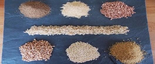 Toutes les céréales ne sont pas bonnes pour la santé !