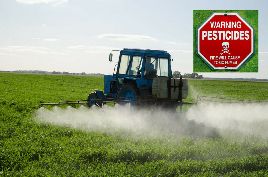 Les pesticides et les engrais coûtent plusieurs milliards d'euros à la France