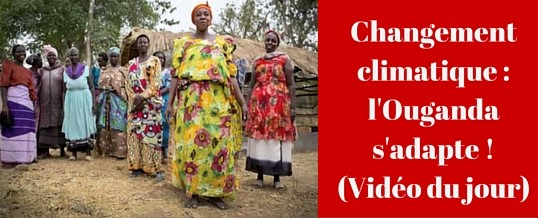 Changement climatique : l'Ouganda s'adapte ! (Vidéo)