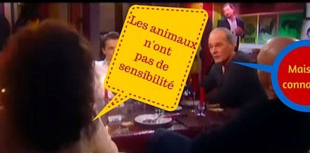 La cause animale défendue par Baffie, avec son franc-parler habituel (Vidéo)