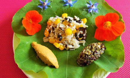 35 arguments pour et contre le végétarisme, à vous de choisir
