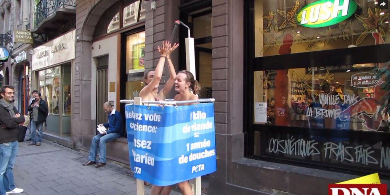 Douche végétarienne à Strasbourg (Vidéo)