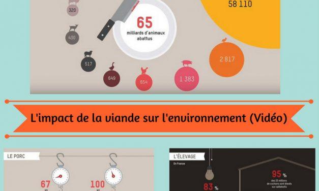 L'impact de la viande sur l'environnement (Vidéo)