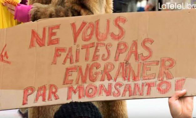 Ne ratez pas la Guerre des Graines, ce soir sur France 5 !