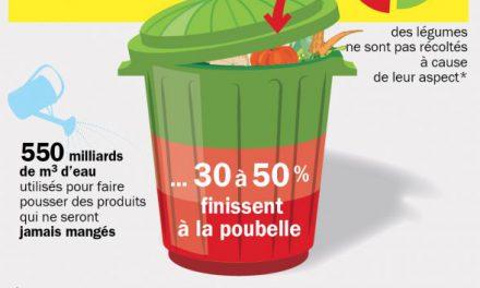 La moitié de la production mondiale jetée à la poubelle