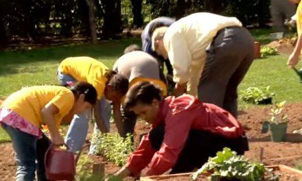 Le jardin bio de Michelle Obama contesté par Monsanto (Vidéo)
