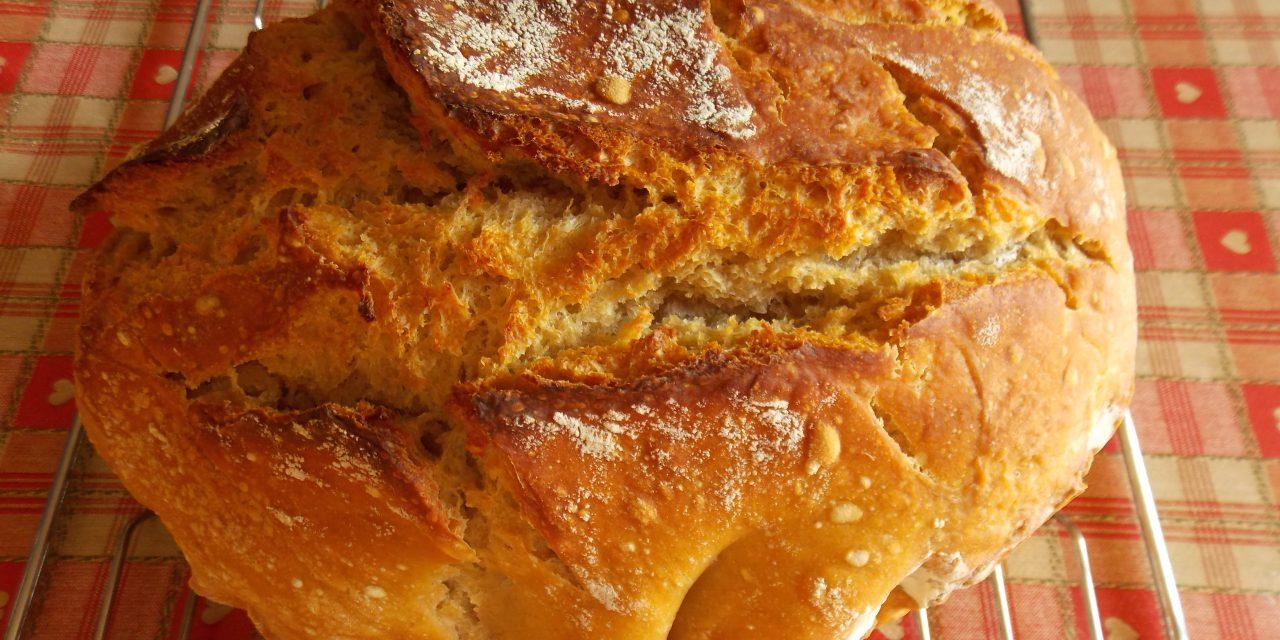 Où trouver du bon pain pas cher, sans additifs et bio ?
