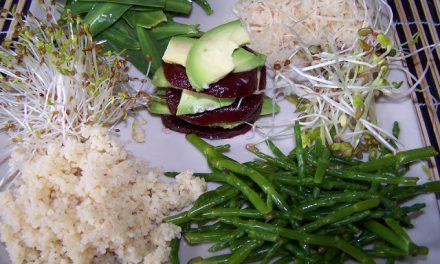 Assiette fraîcheur aux Salicornes et aux Asters (Recette à la Une)