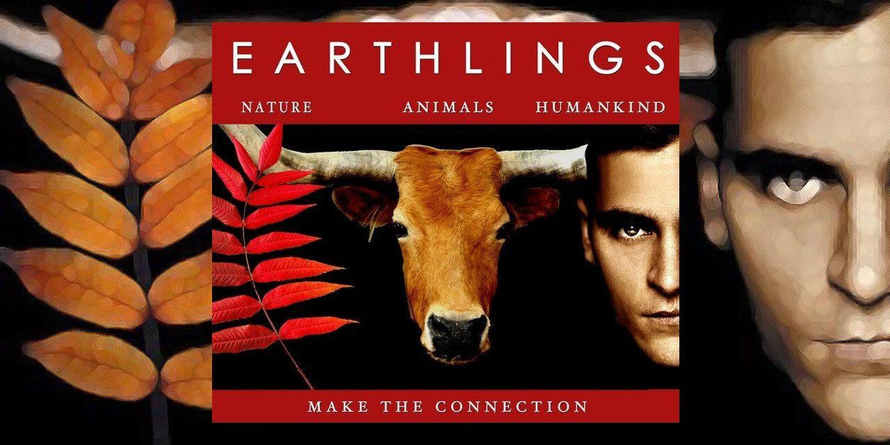 Earthlings (Terriens) : pourquoi faire subir tout cela aux animaux ? (Vidéo)