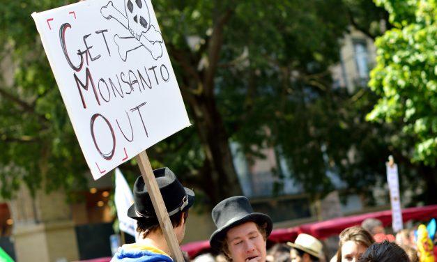 Monsanto renonce-t-il aux OGM en Europe ?