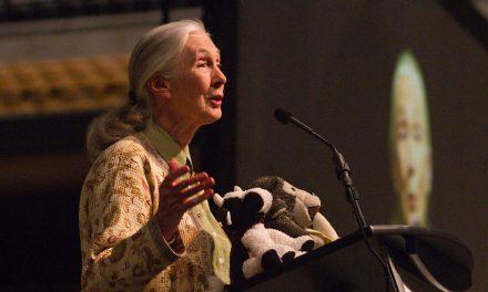 Jane Goodall : un Monde différent est possible (Vidéo)