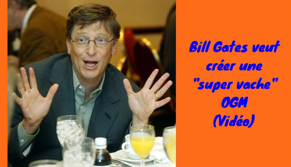 """Bill Gates veut créer une """"super vache"""" OGM (Vidéo)"""