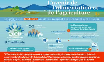 L'avenir de l'alimentation et de l'agriculture selon la FAO