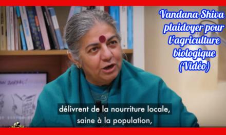 Vandana Shiva : plaidoyer pour l'agriculture biologique (Vidéo)