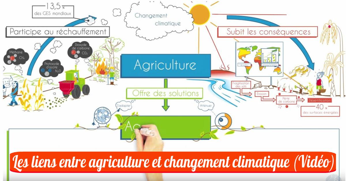 Les liens entre agriculture et changement climatique (Vidéo)