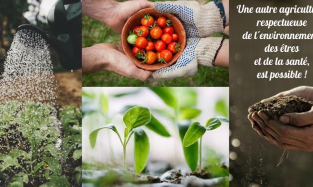 Une autre agriculture, respectueuse de l'environnement, des êtres et de la santé, est possible ! (Vidéo)
