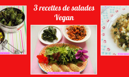 3 recettes de salades Vegan