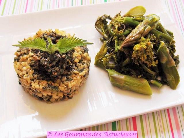Pesto aux orties, asperges du jardin et fleurs de chou (Vegan) 7834