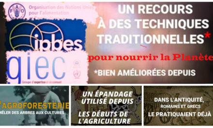 Le GIEC préconise un retour aux méthodes agricoles ancestrales (Vidéo)