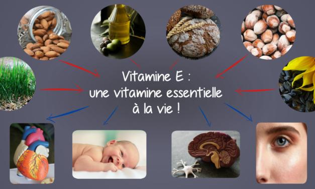 Vitamine E : une vitamine essentielle à la vie !